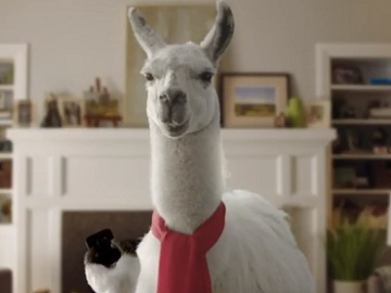Bank of America Llama Commercial