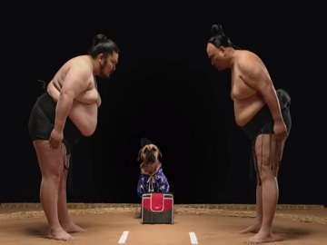 Five Star Commercial - Sumo
