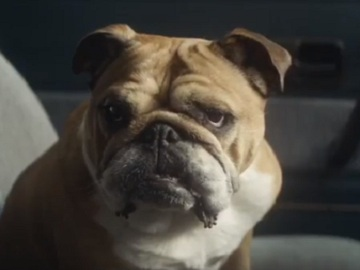 Bulldog Skincare Bank Robbery TV Advert