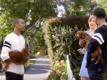 Realtor Elizabeth Banks Dogs Commercial