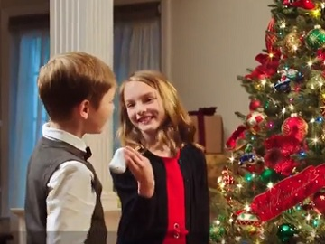 Balsam Hill Christmas Trees Commercial