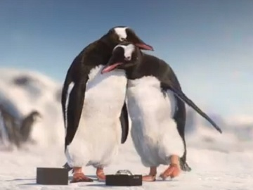 Bulova Watches Penguins Commercial