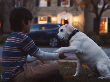 Boy and Guide Dog - Honda CR-V Commercial