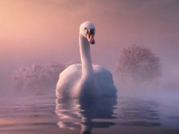 L&C Mortgages Swan Advert