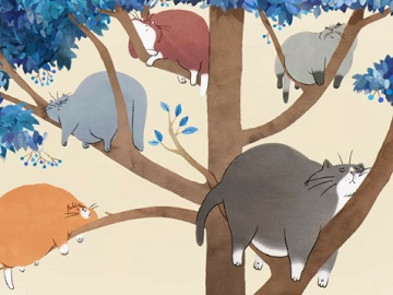 TSB TV Advert - Fat Cats in Tree