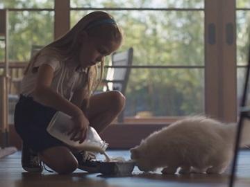 Samsung Family Hub Refrigerator Commercial - Little Girl Feeding Cat