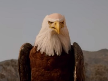 Jack in the Box Eagle Commercial