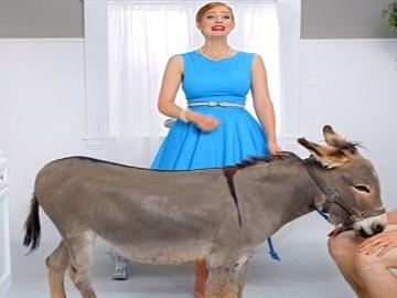 Poo~Pourri Donkey Commercial