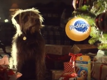 Pedigree Christmas Commercial Dog