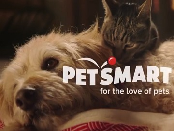 PetSmart Dog And Cat Commercial