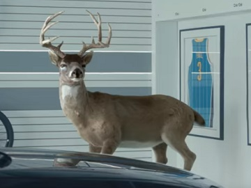 State Farm Deer Commercial