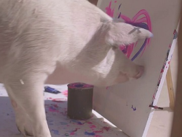 Swatch x Pigcasso Commercial - Painting Pig