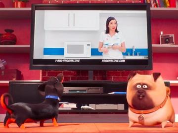 Progressive Commercial: Secret Life of Pets 2