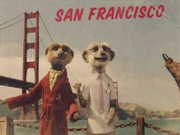 Compare the Market Advert - Sergei and Aleksandr in San Francisco
