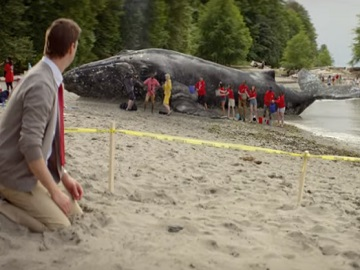 State Farm On the Board Commercial - Beached Whale
