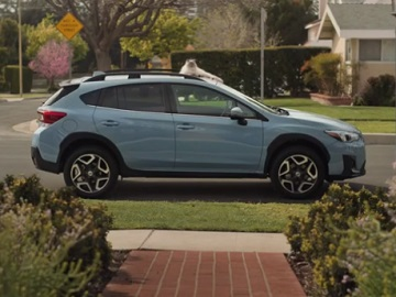 Subaru Crosstrek Dogs Cat Commercial