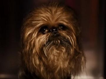 Samsung Star Wars Rescue Chewie Dog Commercial