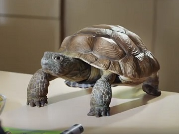 Wonderful Pistachios Commercial - Sheldon the Turtle