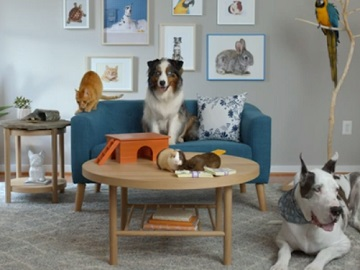 Sling TV Smart Choice Pets Commercial