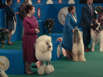 TurboTax Free Edition Dog Show Commercial