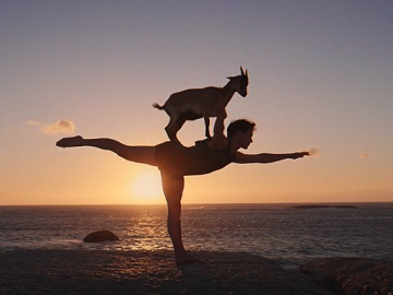 Facebook Personalized Ads Commercial - Feat. Yoga with Goat