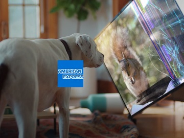 American Express Purchase Protection Dog vs. Squirrel Commercial
