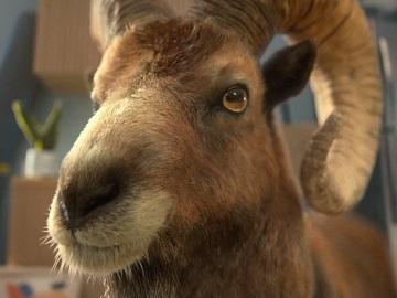 Weetabix Up and Alpen Ram Advert