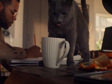 John Lewis ANYDAY Advert Cat