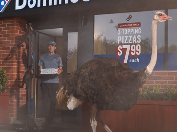 Domino's Pizza Wild Animals Commercial
