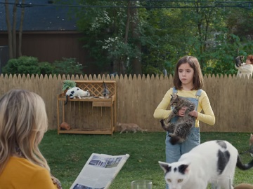 Rocket Mortgage Cats Commercial