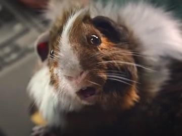 Barclays UK Hamster Talking to Olivia Advert